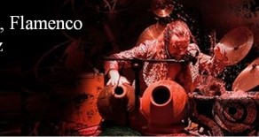 Flamenco Performance and Special Classes